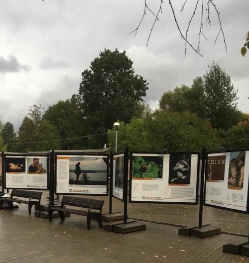 ОБ выставки Северное Тушино